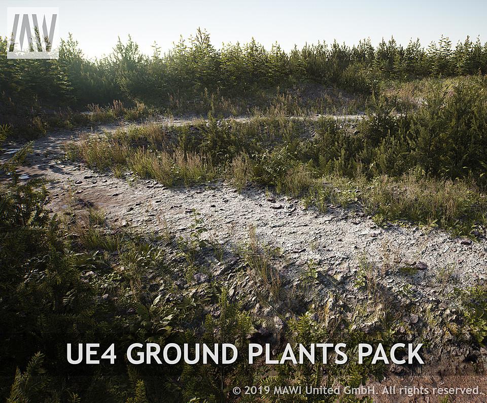 UE4 GROUND PLANTS PACK