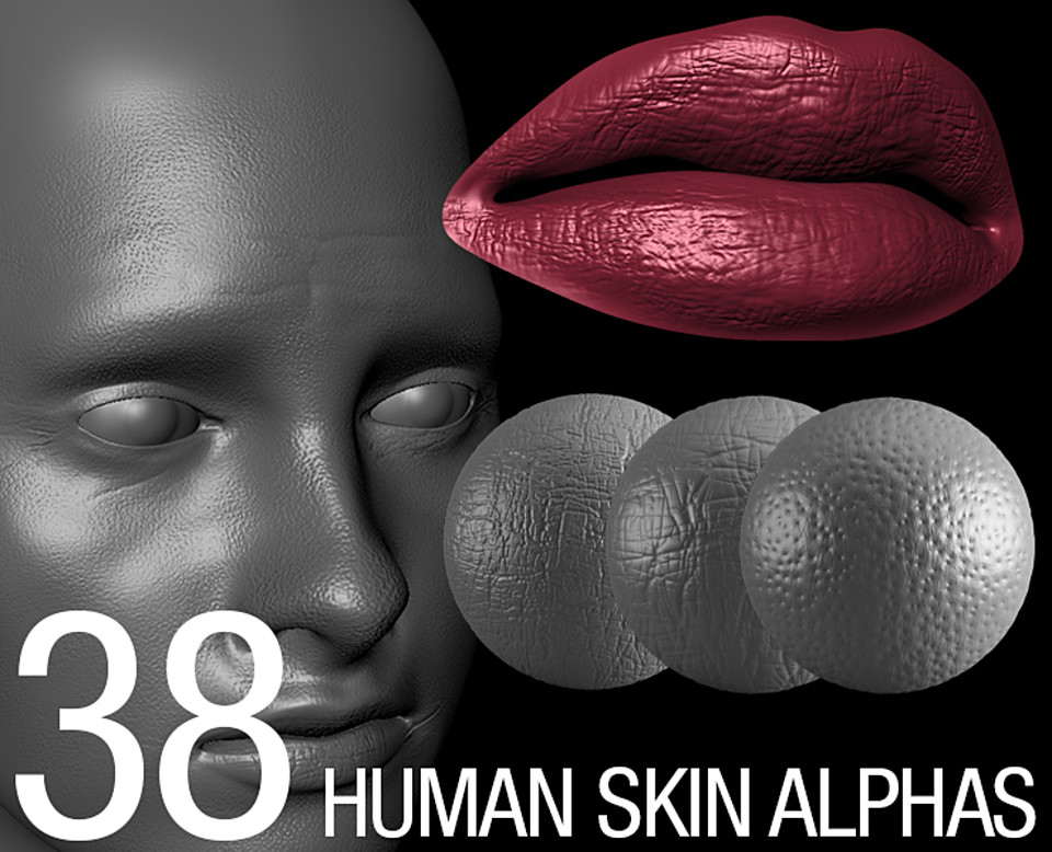 skin alpha brush bundle