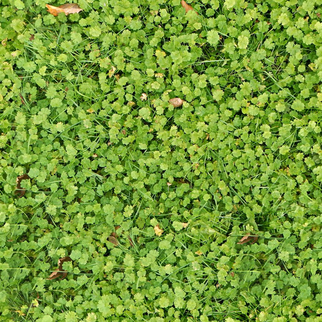 100 Grass Texture Pack VOL-2