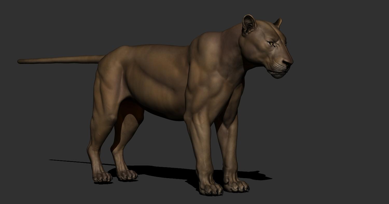 Lion Maya Rig