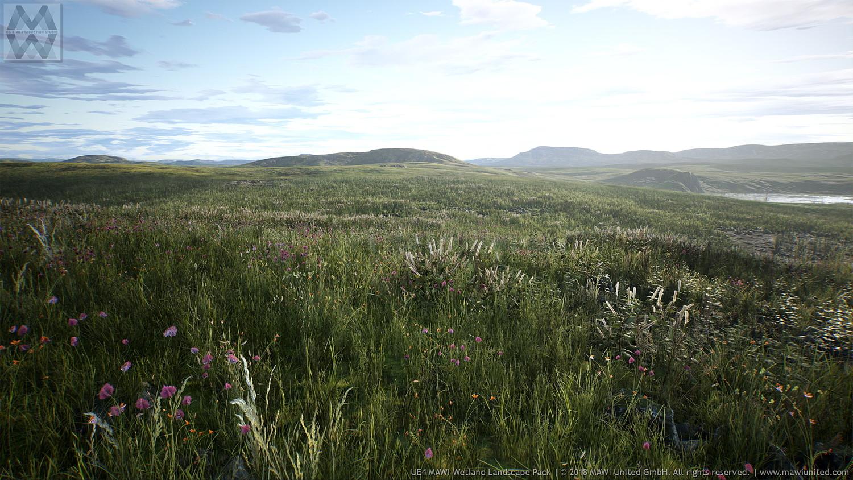 UE4 - WETLAND LANDSCAPE