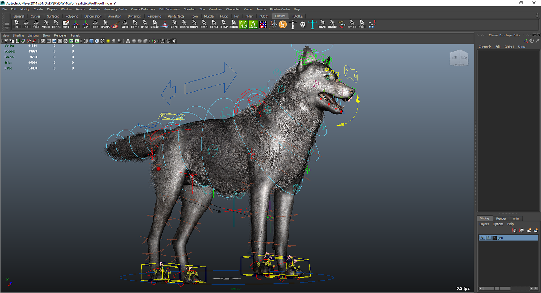 Realistic Wolf Maya Rig