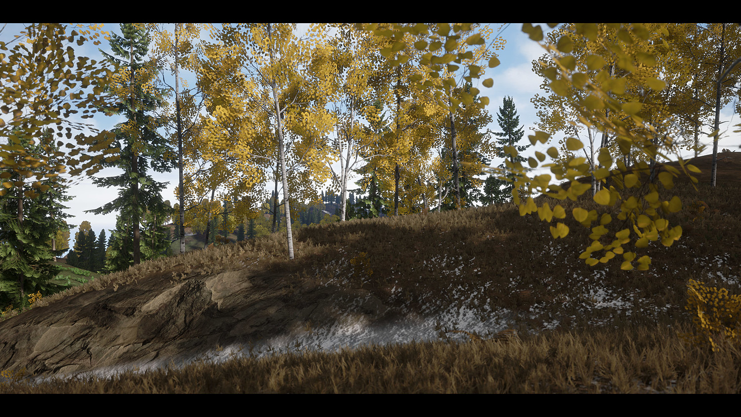 Realistic Forest Pack - Playable Demo [UE4]